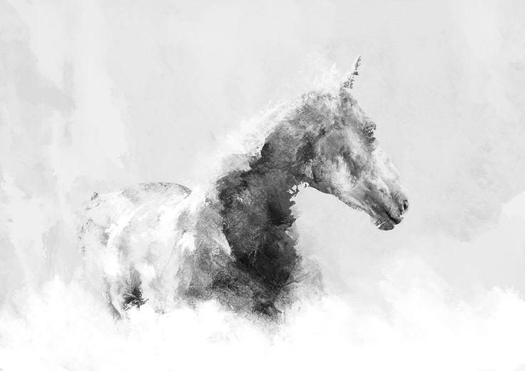 Horse 02 - digital art, created by Magdalena Dymańska