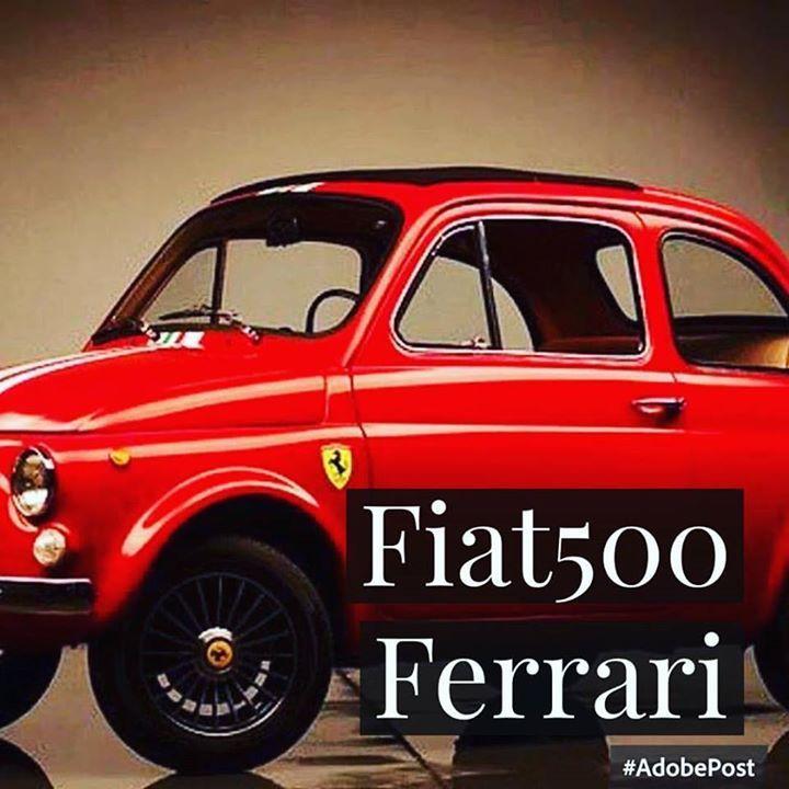 1000+ Images About Http://pinterest.com/fiat500nelmondo