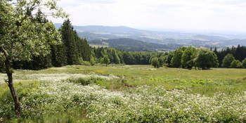 Wanderpauschale Wandern in Grainet im Bayerischen Wald