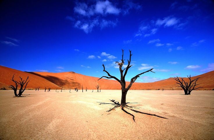 Sossusvlei (Namibia). 'Towering red dunes of incredibly fine  sand that feels soft when it trickles  through your fingers and changes indelibly  with the light, Sossusvlei is an  astounding place, especially given that the  sands originated in the Kalahari millions of  years ago. The Sossusvlei valley is dotted  with hulking dunes.' http://www.lonelyplanet.com/namibia/sights/desert/sossusvlei