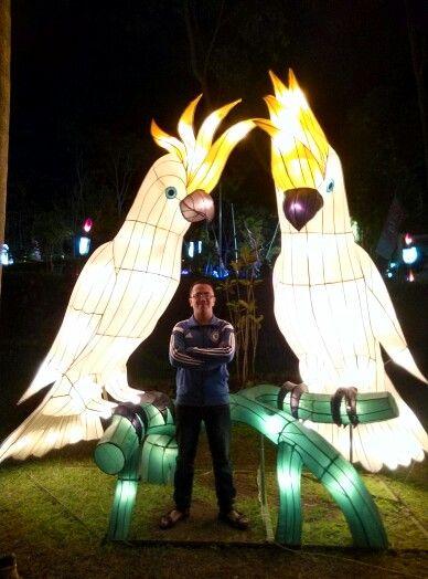 Festival Light Yogyakarta