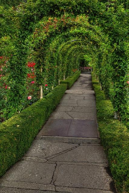 Butchart gardens victoria canada planten garden for Garden design victoria bc