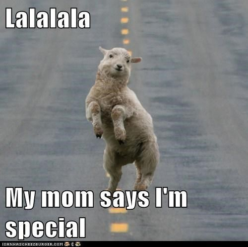 my mom says i'm special meme llama | Lalalala My mom says I'm special - Cheezburger