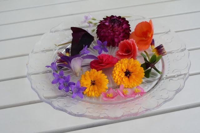 The Fairy Thing: Az ehető virágok nyomában