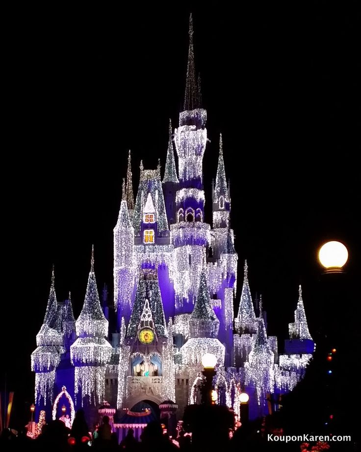 Awesome Pictures with the Samsung Galaxy Note 3 {and pictures from our Disney World vacation}