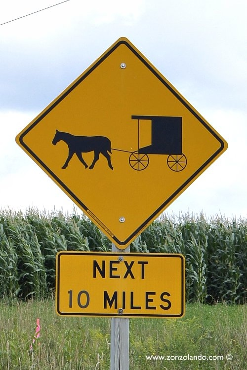 Wisconsin's largest Amish community is only 7 miles from the Westby House Inn.