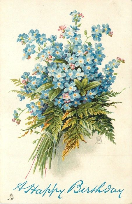 bunch of blue forget-me-nots tied with string, ferns included, stems left