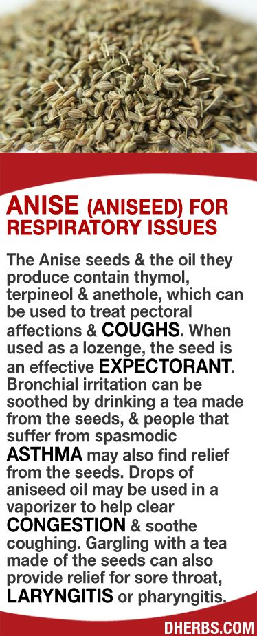 The Anise seeds & the oil contain thymol, terpineol & anethole, which can be used to treat pectoral affections & coughs. When used as a lozenge, the seed is an effective expectorant. Bronchial irritation can be soothed by drinking a tea made from the seeds & spasmodic asthma sufferers may also find relief. Drops of anise oil in a vaporizer can help clear congestion & soothe coughing. Gargling with a tea made of the seeds can also provide relief for sore throat, laryngitis or pharyngitis…