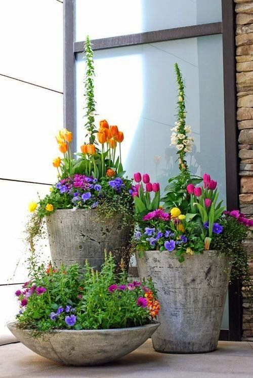 Judy's Cottage Garden: Container Gardens. You can have multiple colors and it won't look to loud.