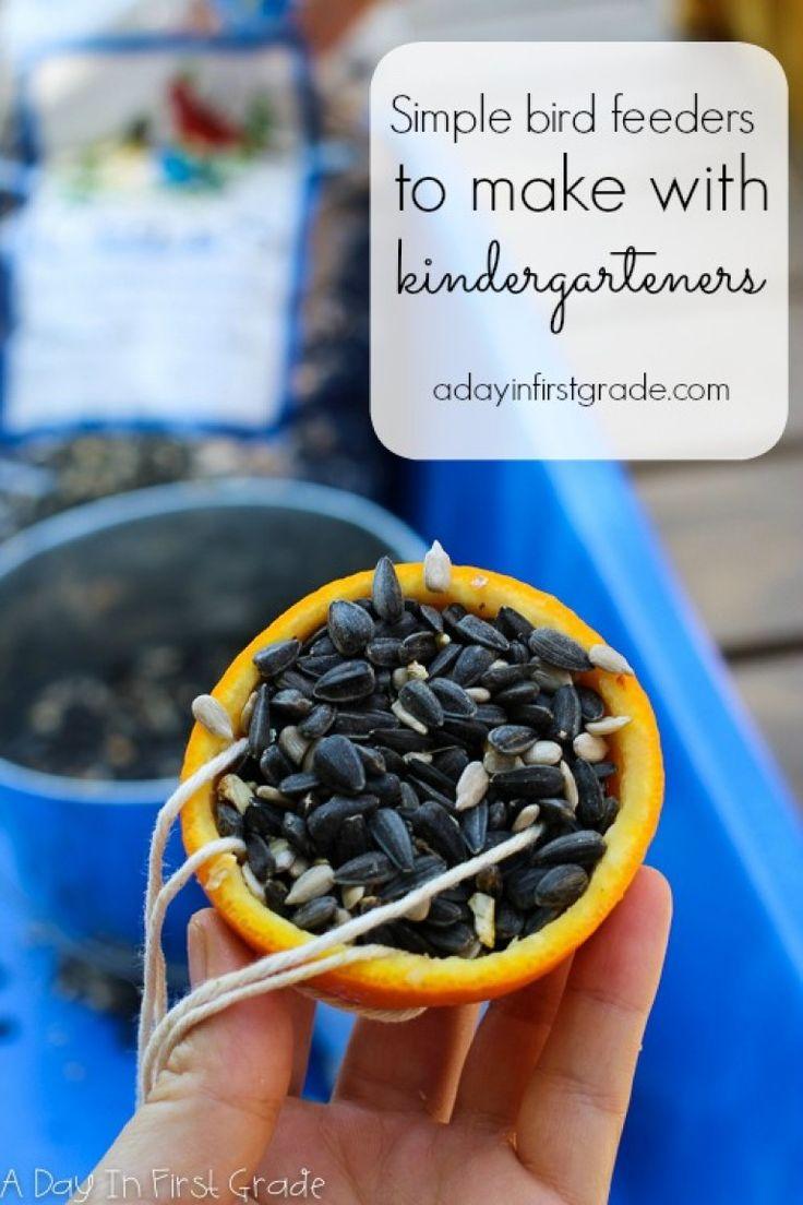 simple bird feeders to make with kindergarteners