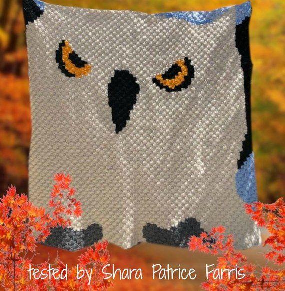 Big Owl Afghan, C2C Crochet Pattern, Written Row Counts, C2C