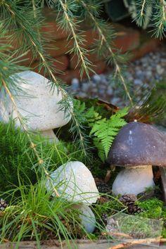 Pilze aus Beton Betonpilze Anleitung