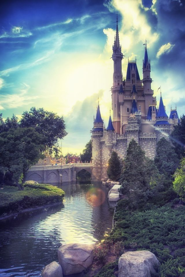 Walt Disney World. This is an amazing picture of The Castle in Magic Kingdom.