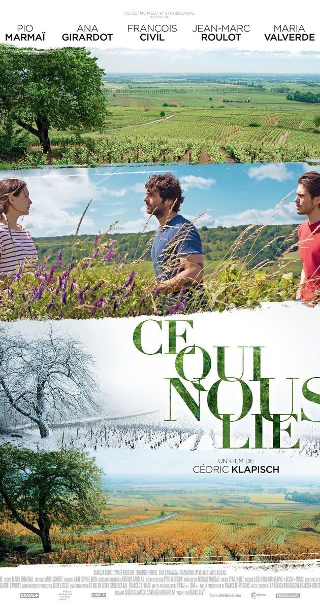"""Ce qui nous lie (France, 2017 / English title: Back to Burgundy [not a great title, the French title translates as """"what holds us together""""] ) A man who left home returns after 10 years in time to say goodbye to his dying father. He stays for the grape harvest at the family vineyard run by his brother and sister while he gives space to his troubled relationship left in Australia. The predictable issues of family, home, duty, forgiveness, independence are nonetheless told well. 3 stars"""