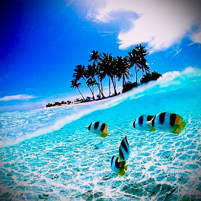 Wakatobi Island, Sulawesi Tenggara, Indonesia