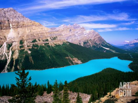 Overhead of Peyto Lake and Mountains, Summer, Banff National Park, Canada Photographic Print by David Tomlinson at Art.com