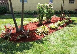 Homeowners can improve their gardens with the help of BG Trees Miami.