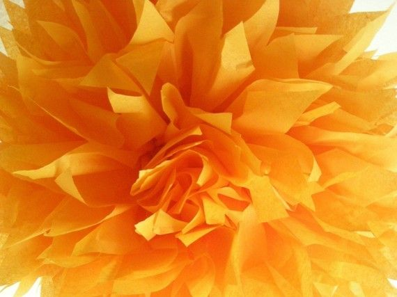 Tangerine+...+1+tissue+paper+pom+//+birthday+party+door+PomLove,+$5.00