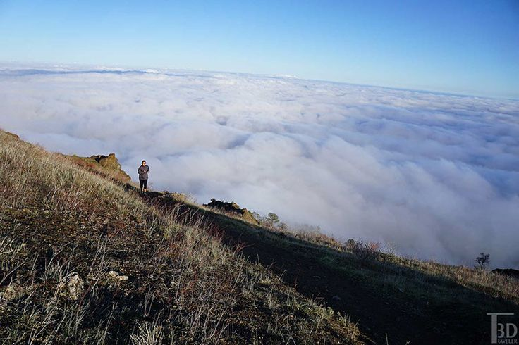 the trail from the summit of Mount Diablo is very popular for trail running