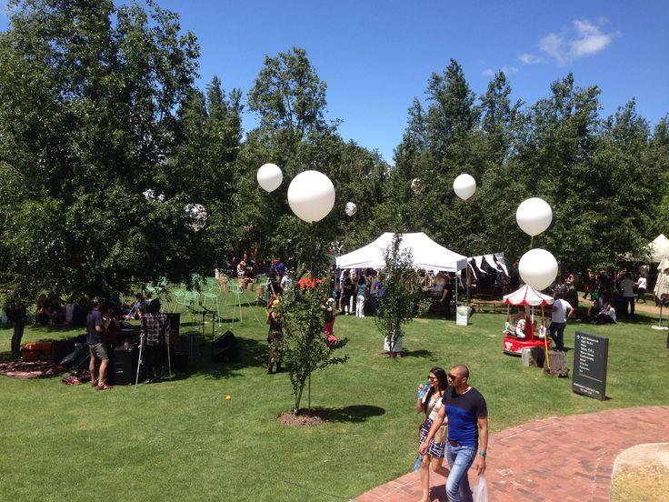 Wine festival on The Spier Wine farm just outside Stellenbosch in the Western-Cape , South Africa