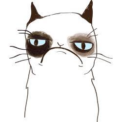 Grumpy Cat Mug for cody