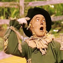 If I only had a brain. I've decided to use Wizard of Oz gifs for POTS. I'll be working mostly with The Tin Man and The Scarecrow for obvious reasons. POTS Postural Orthostatic Tachycardia Syndrome #Dysautonomia #chronic #MrBowerbird