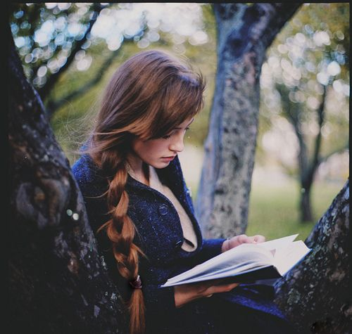 reading in a tree = a perfect day.