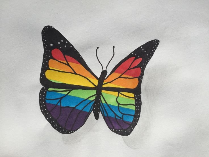#Rainbow #butterfly #nature #insect #pretty #colours #colourful #art #artsy #artist #artwork #creative #fly #rainbowbutterfly