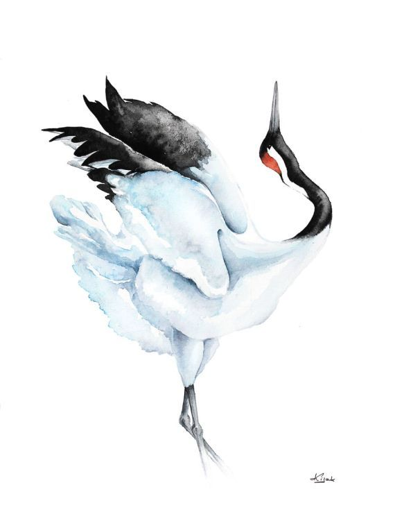 ARTFINDER:  Red-crowned Crane,  bird, birds, ani... by Karolina Kijak - Original watercolors of Crane Paper 300g,  100% cotton size 32x41cm  Follow me on facebook: https://www.facebook.com/kijakwatercolors