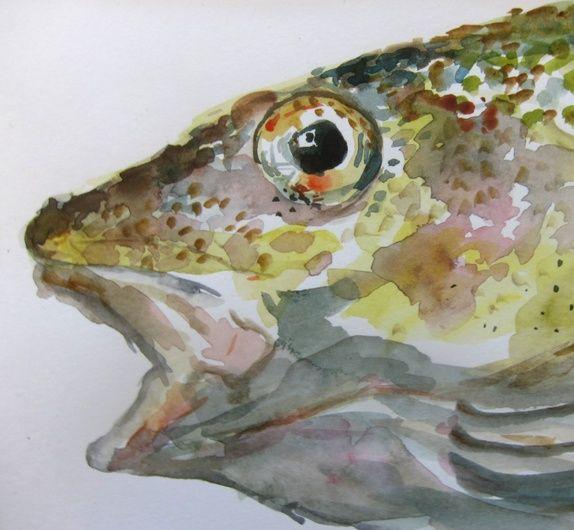 Torsk. Fiske i Aure 2014