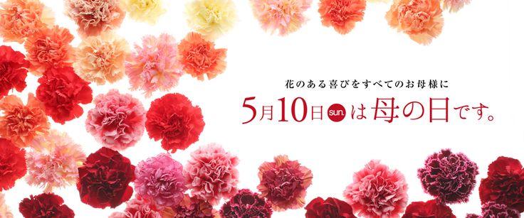 母の日の花を贈るなら第一園芸オンラインショップ