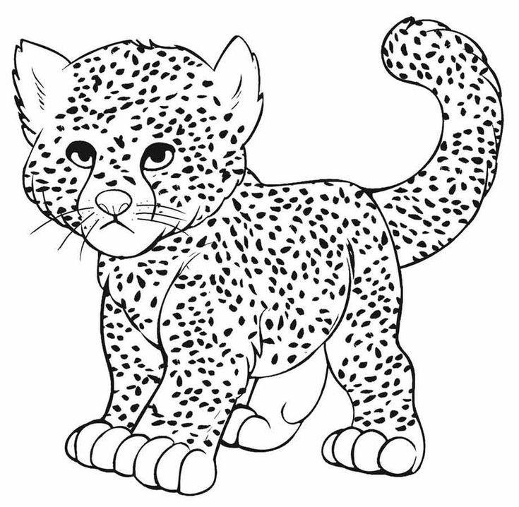 Cheetah Coloring Sheet Printable Cheetah Drawing Animal Coloring Pages Animal Coloring Books