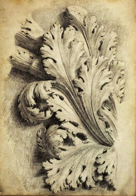 17 best images about acanthus on pinterest baroque for Acanthus leaf decoration