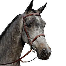Schneiders Pinnacle Raised Fancy Stitched Bridle-Horse