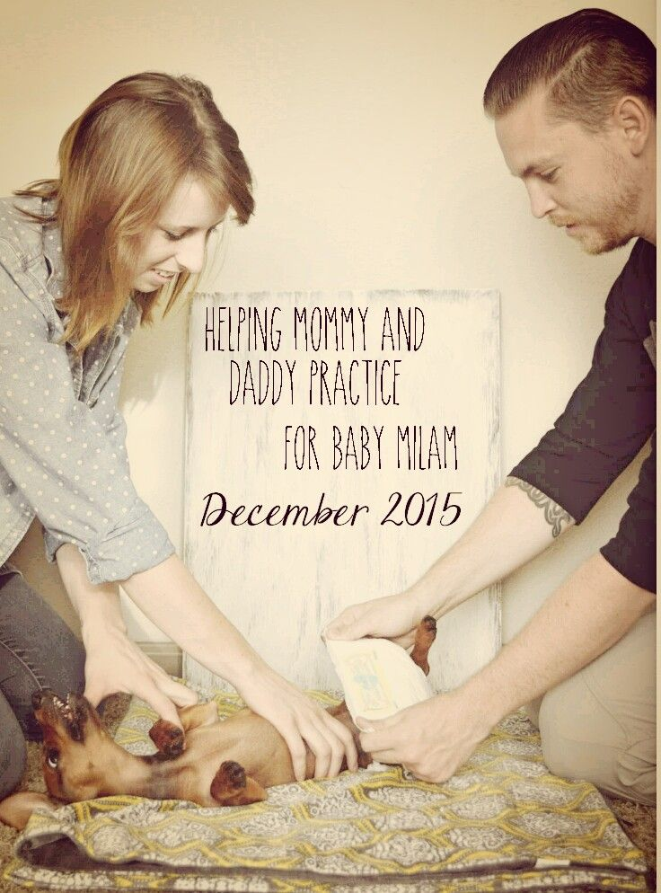 http://milamadventures.blogspot.com  Baby Announcement | with dog | pregnancy announcement