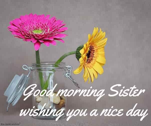 120 Lovely Good Morning Wishes And Greetings For Sister Good Morning Sister Good Morning Wishes Good Morning Sister Quotes