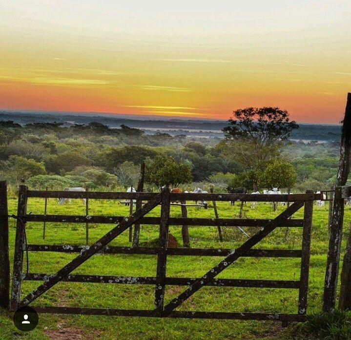 #Paraguay#insta_paraguay#coronel#oviedo#atardecer#turismo#interno
