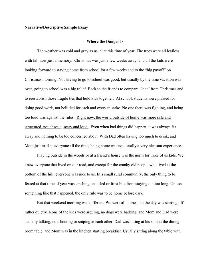 Sample Narrative Descriptive Essay How To Create A Download Thi Example Writing Interview