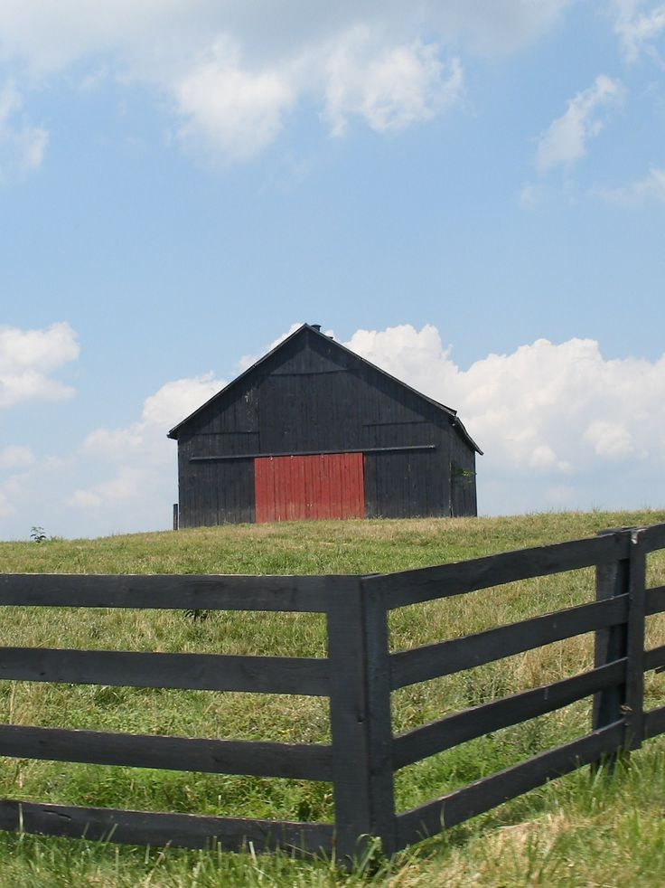 barnRed Doors, Wood Fence, Black Barns, Back Yards, Barns Doors, Black Fence, Barns Beautiful, Red Barns, Old Barns