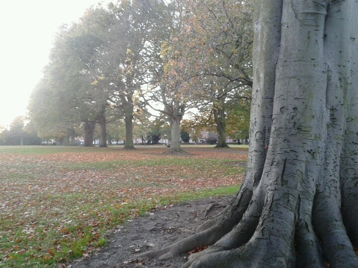 Abington Park, Northampton Where I spent a lot of my time in my Teens.