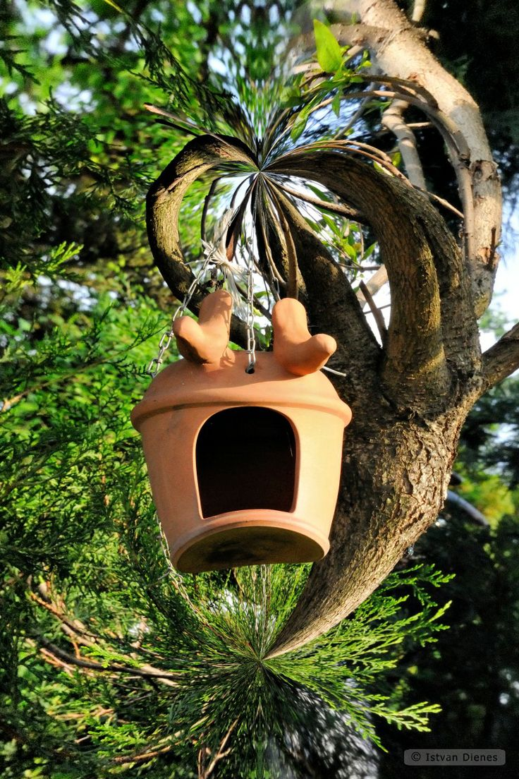 Twist-Art Garden