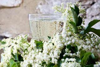 Domácí šampaňské z květů černého bezu