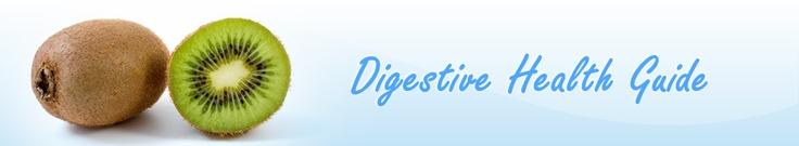 Prebiotics and Probiotics   food list