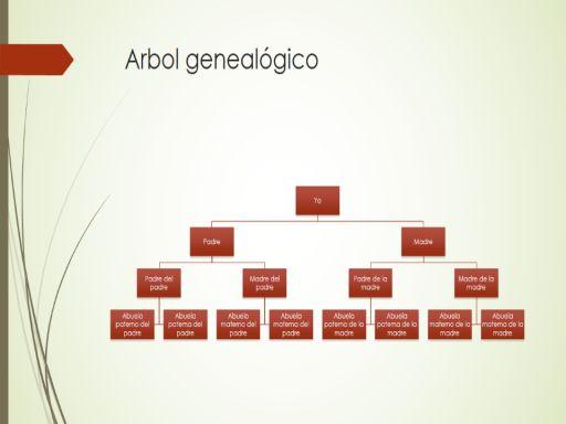 Gráfico de árbol genealógico (vertical, verde, rojo, panorámico)                                                                                                                                                                                 Más