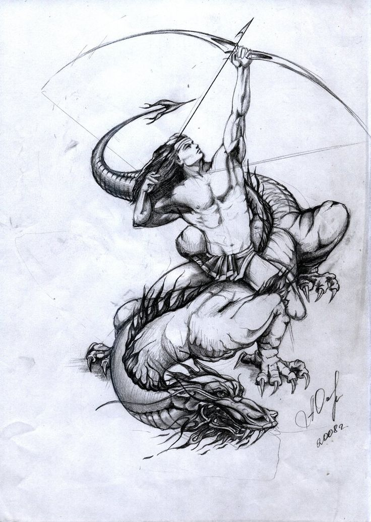 dragon vs sagitarius - Google Search