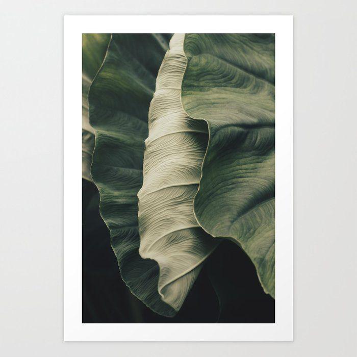 Buy Elephant Ear Leaves Art Print by ingz. Worldwide ...