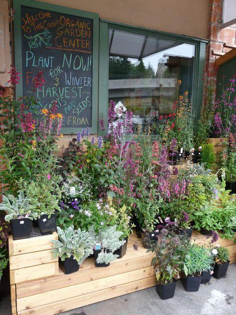73 best Garden center images on Pinterest | Garden center displays ...