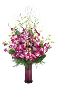 10 Orchids arranged in a glass vase.