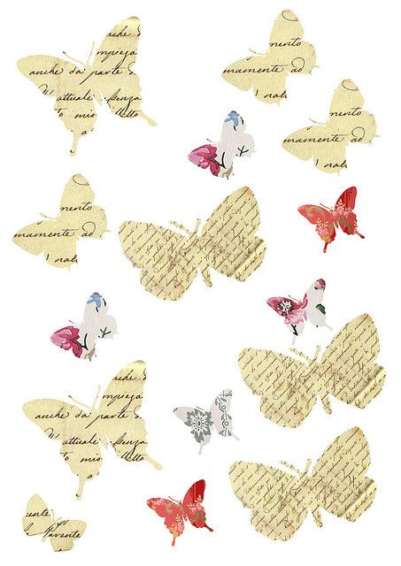 Free butterfly collage images, floral & script paper - free, no copyrights | Flickr - Photo Sharing!