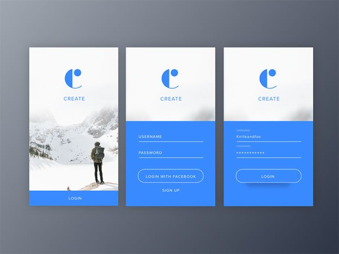 Mobile User Interface Login Form Design Inspiration